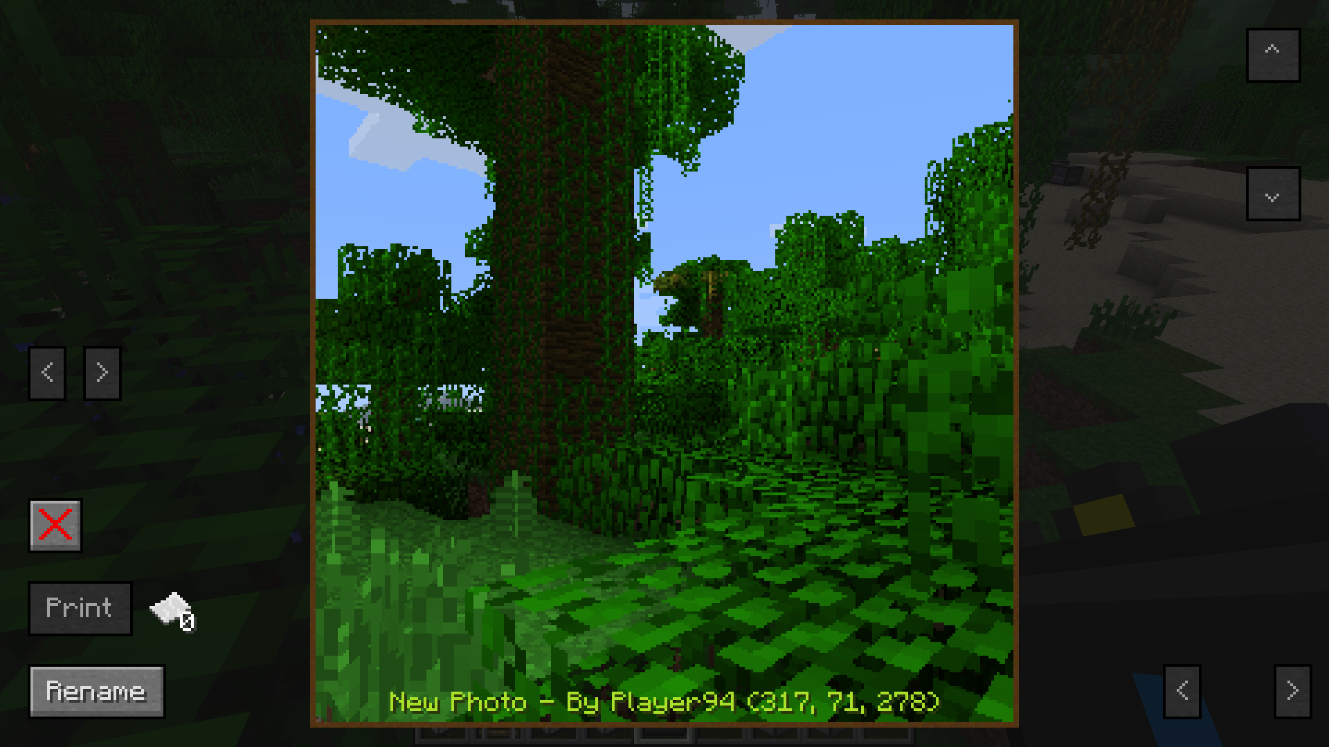http://minecraft-forum.net/wp-content/uploads/2012/10/64c31__CameraCraft-Mod-5.png