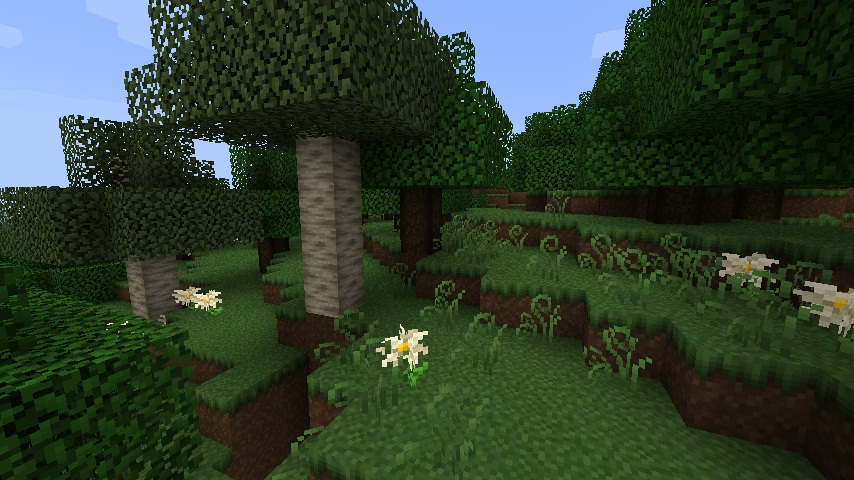 http://minecraft-forum.net/wp-content/uploads/2012/11/6c920__FeatherSong_3.jpg