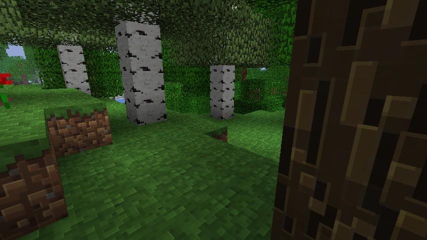 https://minecraft-forum.net/wp-content/uploads/2012/11/ce0fc__Traditional-beauty-texture-pack-2.jpg