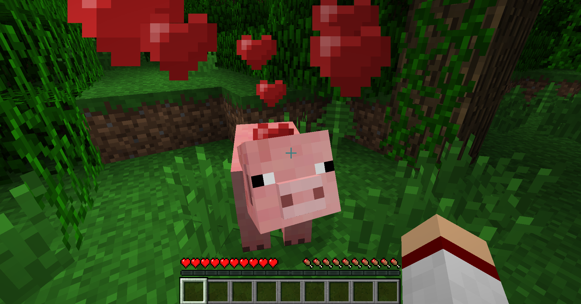 PettingPig [1.5.2] Petting Mod Download