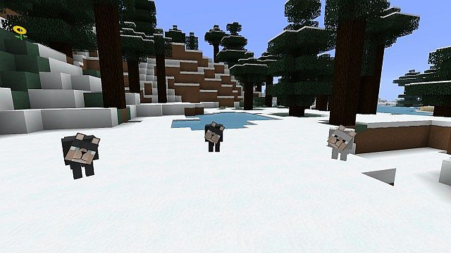 http://minecraft-forum.net/wp-content/uploads/2013/01/13727__Porkchop-media-texture-pack-5.jpg