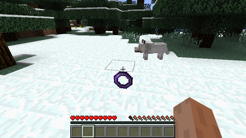 http://minecraft-forum.net/wp-content/uploads/2013/01/1acc6__Flying-Ring-Mod-1.png