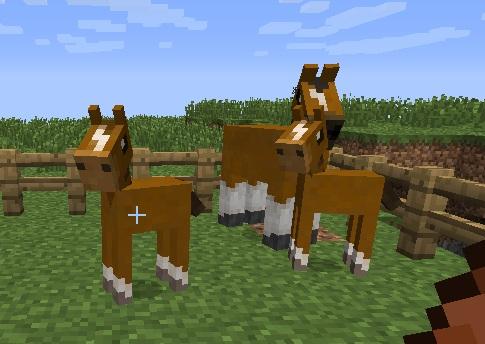 2a451  t7kbl4jv Roxa's Horses Screenshots