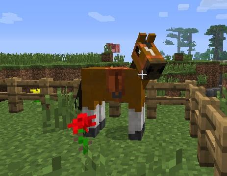 99b8e  qrfc5buu Roxa's Horses Screenshots