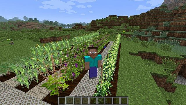 a1d58  Plants and Food Mod 3 Plants and Food Screenshots