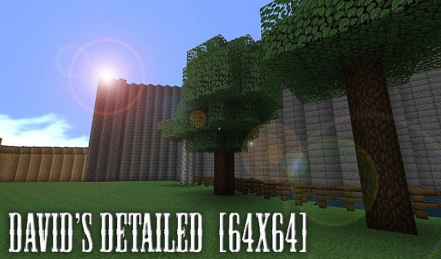 http://minecraft-forum.net/wp-content/uploads/2013/01/c0c1a__Detailed-texture-pack.jpg