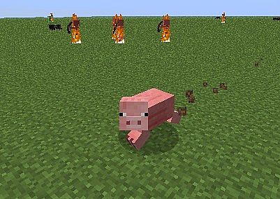 http://minecraft-forum.net/wp-content/uploads/2013/01/e0036__Shape-Shifter-Z-Mod-5.jpg