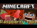 [1.4.7]  Raspberry Mod Download