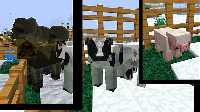 http://minecraft-forum.net/wp-content/uploads/2013/02/aa5d6__Halo-minecraft-texture-pack-7.jpg