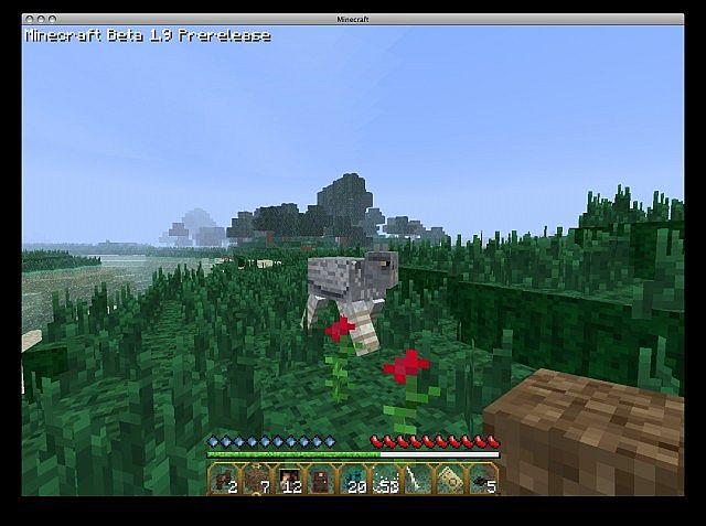 http://minecraft-forum.net/wp-content/uploads/2013/02/b9fc5__Hogwarts-texture-pack-2.jpg