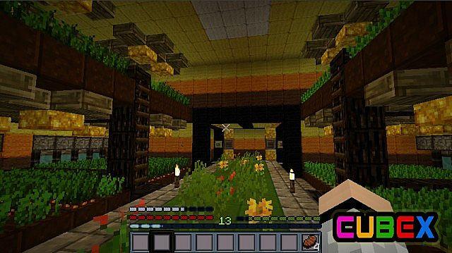 http://minecraft-forum.net/wp-content/uploads/2013/02/e815b__Cubex-texture-pack-3.jpg