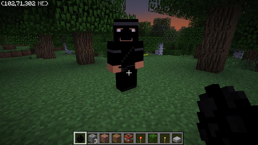 Ninjas Mod