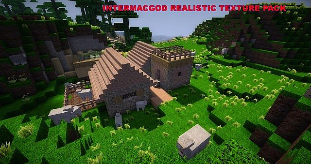 http://minecraft-forum.net/wp-content/uploads/2013/05/dc387__Intermacgod-realistic-texture-pack.jpg