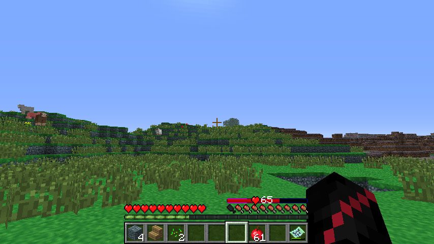 http://minecraft-forum.net/wp-content/uploads/2013/06/0a785__Health-Charms-Mod-1.jpg