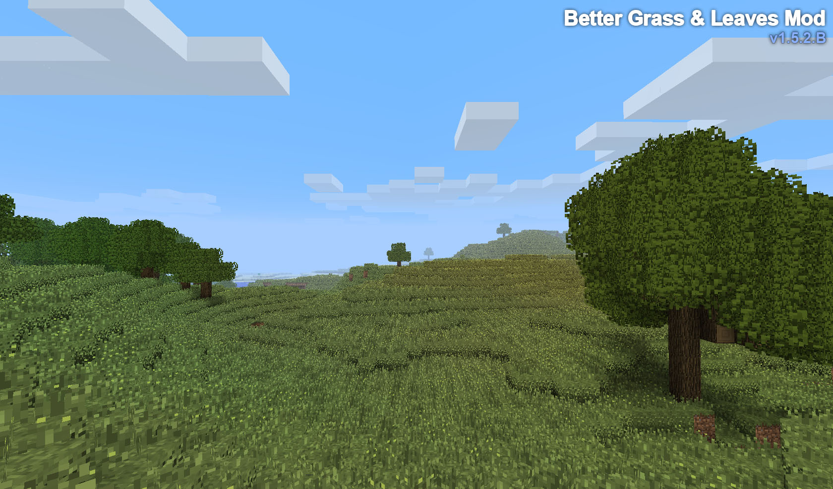 http://minecraft-forum.net/wp-content/uploads/2013/06/fe432__Better-Grass-and-Leaves-Mod-1.jpg