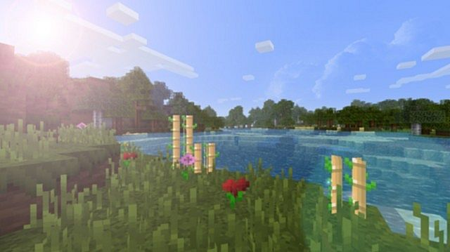 http://minecraft-forum.net/wp-content/uploads/2013/07/0fe52__FNI-realistic-rpg-texture-pack-5.jpg
