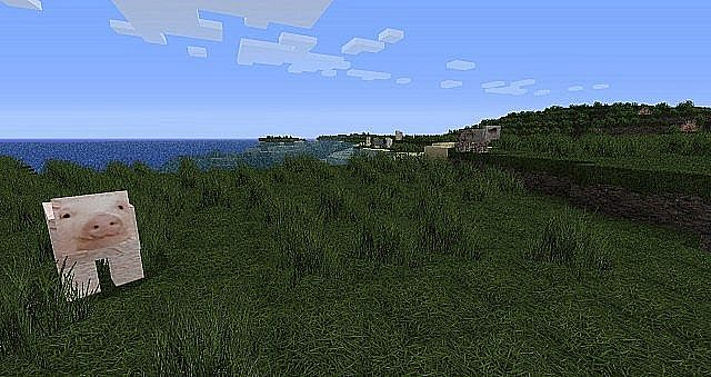http://minecraft-forum.net/wp-content/uploads/2013/07/757b1__Creativexs-realism-texture-pack-9.jpg