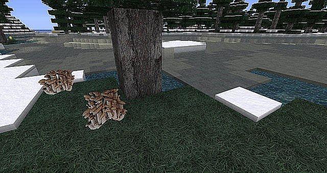 http://minecraft-forum.net/wp-content/uploads/2013/07/d8205__Creativexs-realism-texture-pack.jpg