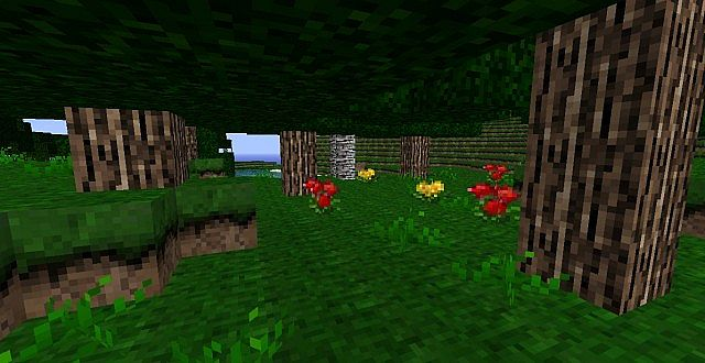http://minecraft-forum.net/wp-content/uploads/2013/07/e865b__Echanium-craft-texture-pack-1.jpg