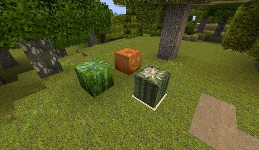 http://minecraft-forum.net/wp-content/uploads/2013/08/b5520__Relaxing-texture-pack-7.jpg