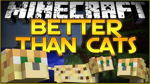 cat mods minecraft