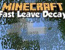 [1.10.2] Fast Leave Decay Mod Download
