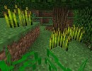 [1.7.2] Plants Plus Mod Download