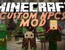 [1.10.2] Custom NPCs Mod Download