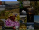 [1.9.4/1.8.9] [512x] Laacis2's Nature Paintings Texture Pack Download