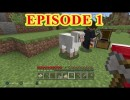 New Minecraft video series!