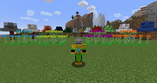 Planttech-Mod-2.jpg