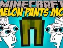 [1.8.9] Melon Pants Mod Download