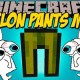 [1.10.2] Melon Pants Mod Download