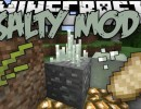 [1.8.9] Salty Mod Download