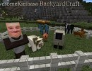 [1.9.4/1.9] [64x] BackyardCraft Photo Realism Texture Pack Download