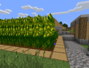 [1.8.9] Simple Corn Mod Download