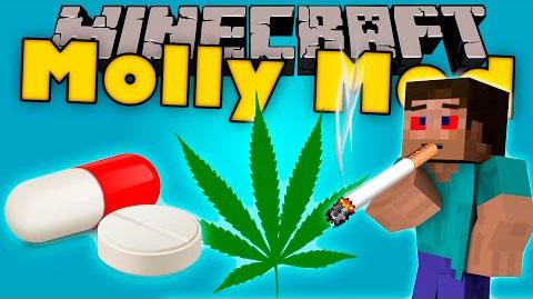 ebf8b  Molly Mod [1.10.2] Molly (Cocaine, Drug, Vodka) Mod Download