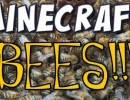 [1.10.2] More Bees Mod Download