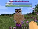 [1.10.2] Vegetita (VEGETTA777) Mod Download