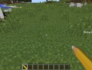 [1.11.2] Biome Paint Tools Mod Download
