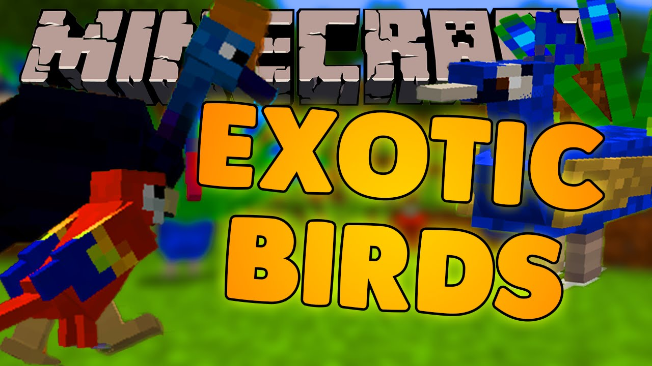 exotic birds mod minecraft